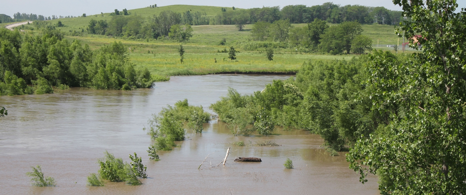 Floodwaters spill out of a streambank.