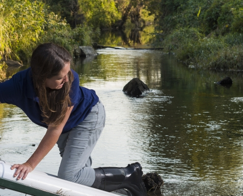 A female researcher cleans out a water-quality sensor on an Iowa creek.