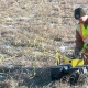 A researcher in a safety vest crouches in front of machinery in a field