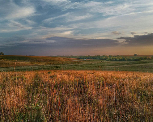 Lovely landscape photo of the prairie at Neal Smith Wildlife Refuge. Photo by Doreen Van Ryswyk/USFWS
