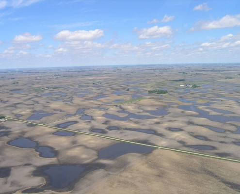 Aerial view of prairie potholes in north central Iowa. IDNR photo