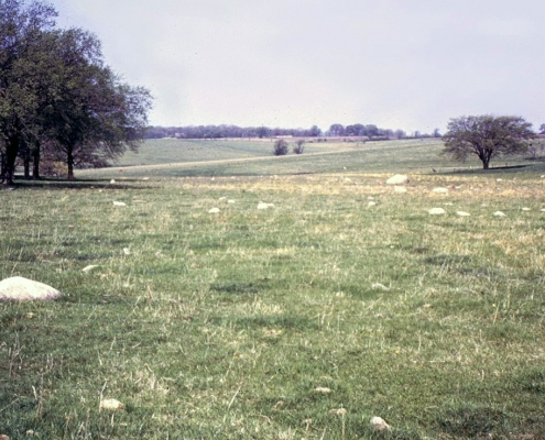 Glacial erratics in a field of the Iowan Surface