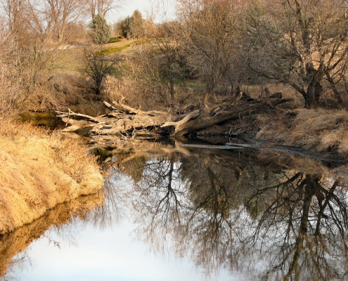 Fall or early spring view of Little Sioux River with fallen trees