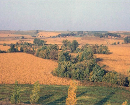 Fall before harvestime view of Rolling Hills of Northwest Iowa Plains