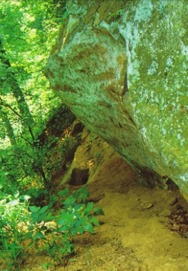 Rock outcrop in a green, wooded area.