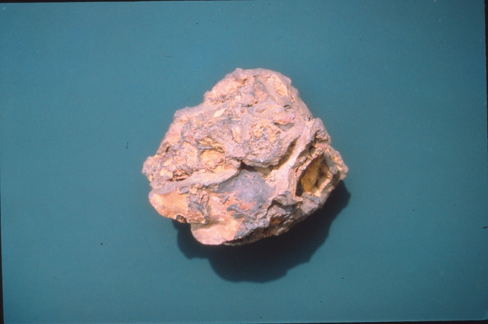 A pinkish rock against a teal background