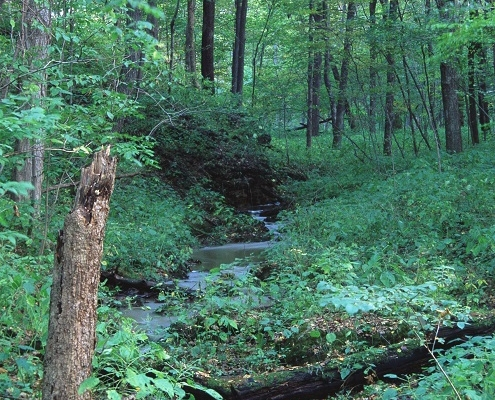 langdcape view from Maquoketa Caves State Park