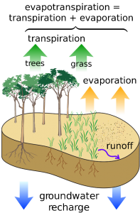 graphic describing groundwater recharge